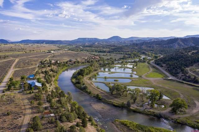 7498 County Road 213, Durango, CO 81303 (MLS #786536) :: Durango Mountain Realty