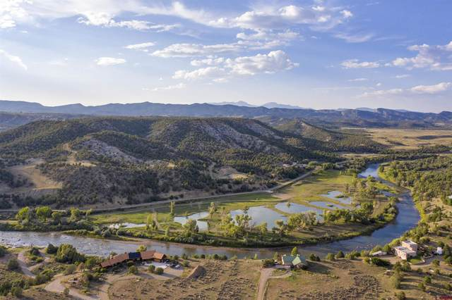 7498 County Road 213, Durango, CO 81303 (MLS #786537) :: Durango Mountain Realty