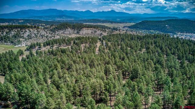 X Bienvenido Circle, Pagosa Springs, CO 81147 (MLS #786538) :: The Howe Group   Keller Williams Colorado West Realty