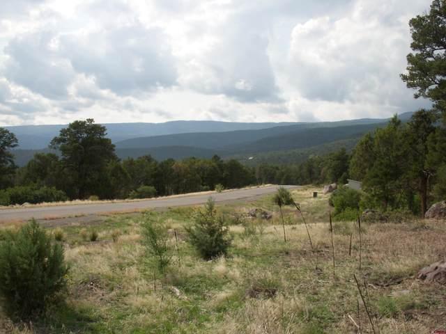 TBD Wild Turkey Drive, Cedaredge, CO 81413 (MLS #786562) :: The Howe Group   Keller Williams Colorado West Realty