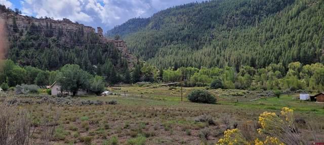 17736 County Road 500, Pagosa Springs, CO 81147 (MLS #786569) :: The Howe Group   Keller Williams Colorado West Realty