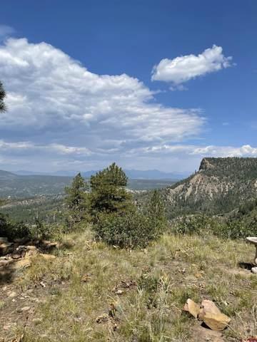 1142 and 1200 Gun Barrel Road, Pagosa Springs, CO 81147 (MLS #786574) :: The Howe Group | Keller Williams Colorado West Realty