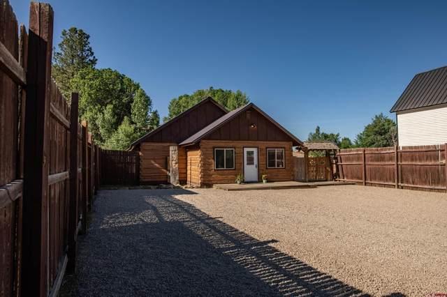 303 San Juan Street, Pagosa Springs, CO 81147 (MLS #786578) :: The Howe Group   Keller Williams Colorado West Realty