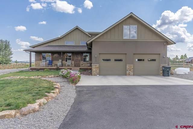 214 Encantado Lane, Durango, CO 81303 (MLS #786620) :: Durango Mountain Realty