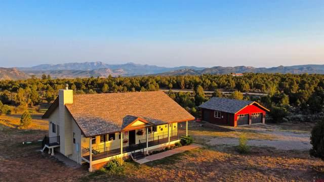 693 Cr 301, Durango, CO 81303 (MLS #786652) :: Durango Mountain Realty