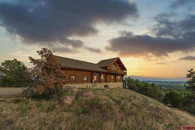 977 Rincon Ridge Road, Durango, CO 81301 (MLS #786659) :: Durango Mountain Realty