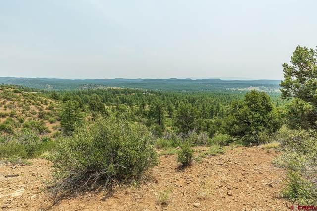 123 Rincon Ridge Road, Durango, CO 81301 (MLS #786660) :: Durango Mountain Realty