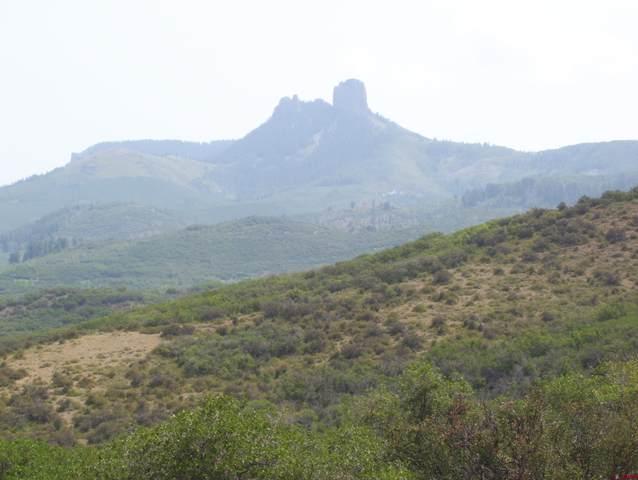 83702 Deep Creek Trail, Crawford, CO 81415 (MLS #786672) :: The Howe Group | Keller Williams Colorado West Realty