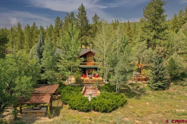 281 Chelsey Lane, Durango, CO 81301 (MLS #786711) :: Berkshire Hathaway HomeServices Western Colorado Properties
