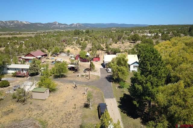 473 County Road 233, Durango, CO 81301 (MLS #786777) :: Durango Mountain Realty