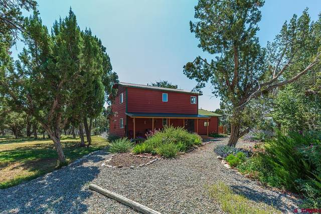 117 Gambel Circle, Durango, CO 81303 (MLS #786801) :: Durango Mountain Realty