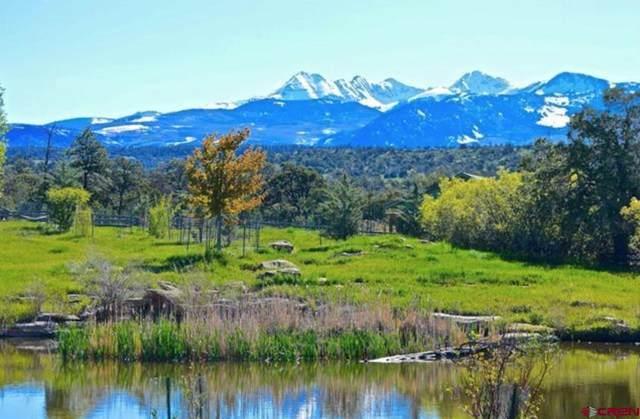10455 Road 39, Mancos, CO 81328 (MLS #786810) :: Berkshire Hathaway HomeServices Western Colorado Properties