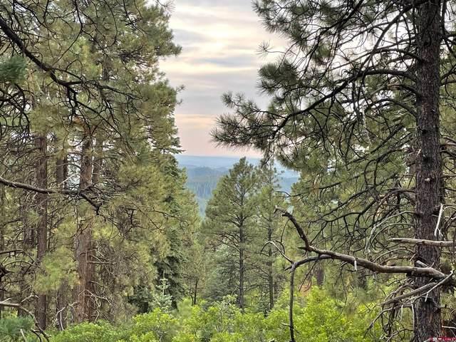 255 Pine Crest Drive, Bayfield, CO 81122 (MLS #786813) :: Berkshire Hathaway HomeServices Western Colorado Properties