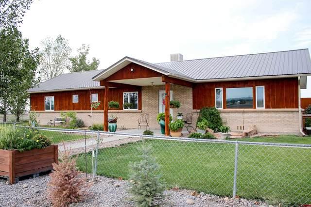58811 Banner Road, Olathe, CO 81425 (MLS #786816) :: The Howe Group | Keller Williams Colorado West Realty
