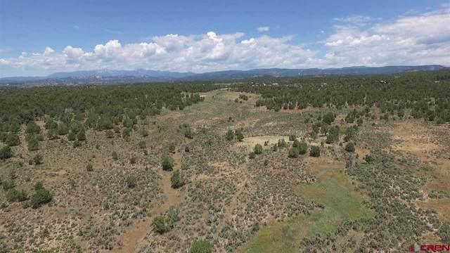 3805 County Road 510, Durango, CO 81301 (MLS #786825) :: Durango Mountain Realty