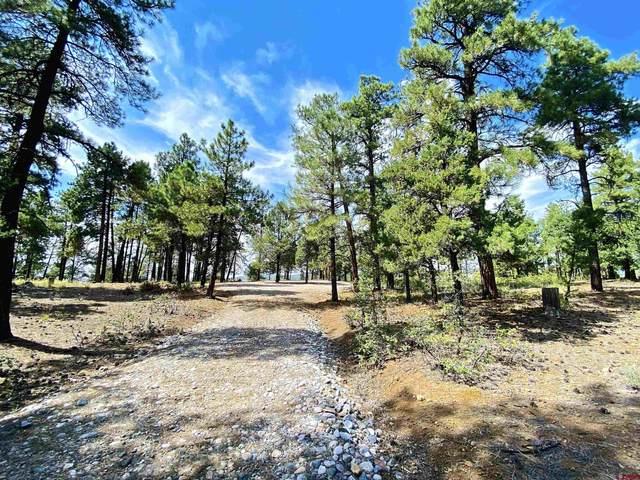 5561 Cr 228, Durango, CO 81301 (MLS #786864) :: Durango Mountain Realty