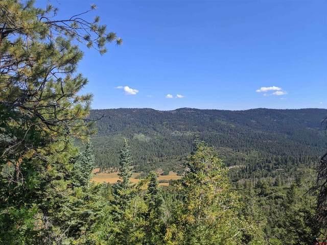 3003 Bear Creek Road, Bayfield, CO 81122 (MLS #786895) :: The Howe Group   Keller Williams Colorado West Realty