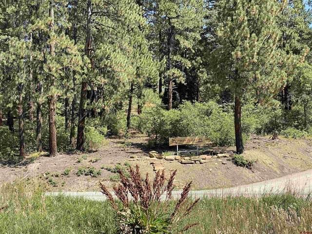 95 Mark Trail, Durango, CO 81301 (MLS #786896) :: The Howe Group | Keller Williams Colorado West Realty