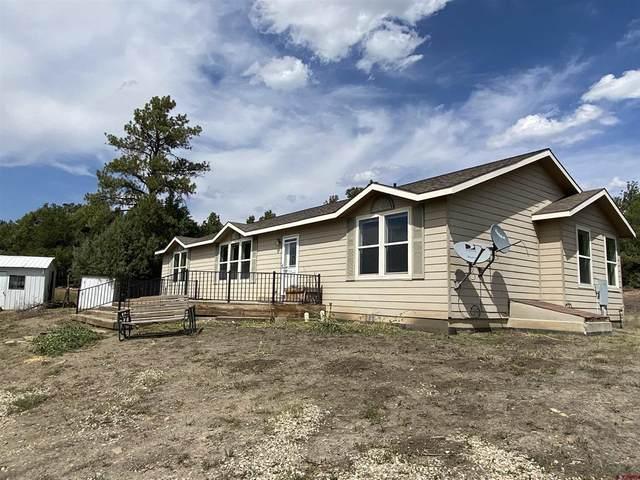 38799 Highway 184, Mancos, CO 81328 (MLS #786906) :: Berkshire Hathaway HomeServices Western Colorado Properties