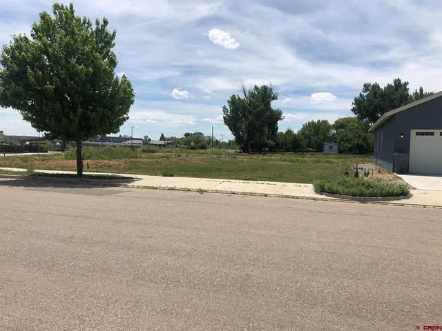 500 Tranquilo Court, Ignacio, CO 81137 (MLS #786925) :: Berkshire Hathaway HomeServices Western Colorado Properties