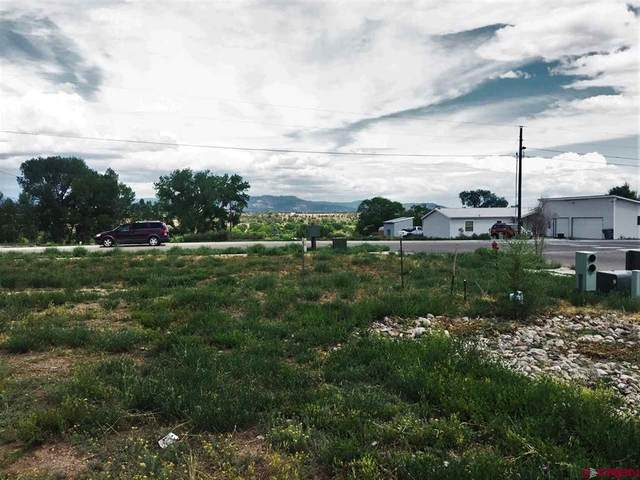 503 Tranquilo Court, Ignacio, CO 81137 (MLS #786926) :: Berkshire Hathaway HomeServices Western Colorado Properties