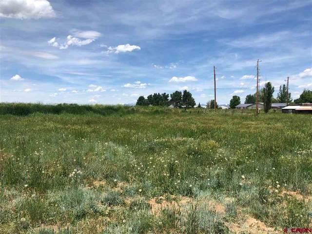 521 Tranquilo Court, Ignacio, CO 81137 (MLS #786927) :: Berkshire Hathaway HomeServices Western Colorado Properties