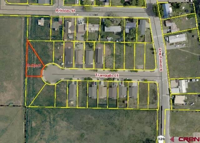 523 Tranquilo Court, Ignacio, CO 81137 (MLS #786928) :: Berkshire Hathaway HomeServices Western Colorado Properties