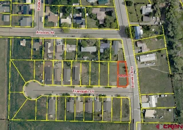 501 Tranquilo Court, Ignacio, CO 81137 (MLS #786931) :: Berkshire Hathaway HomeServices Western Colorado Properties