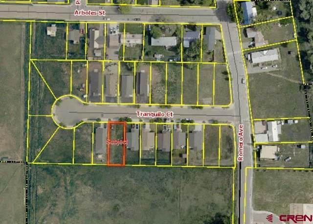 512 Tranquilo Court, Ignacio, CO 81137 (MLS #786932) :: Berkshire Hathaway HomeServices Western Colorado Properties