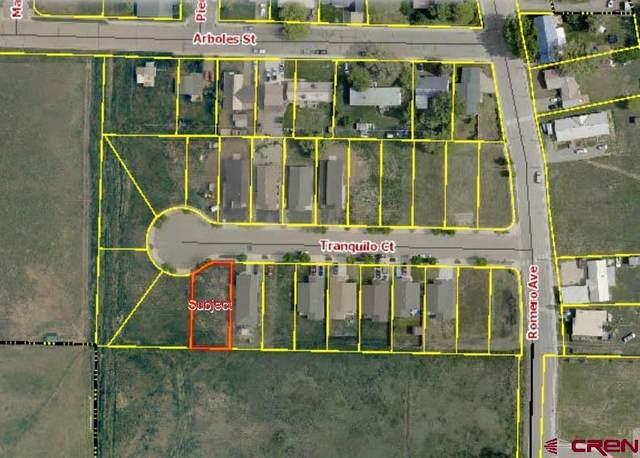 516 Tranquilo Court, Ignacio, CO 81137 (MLS #786933) :: Berkshire Hathaway HomeServices Western Colorado Properties