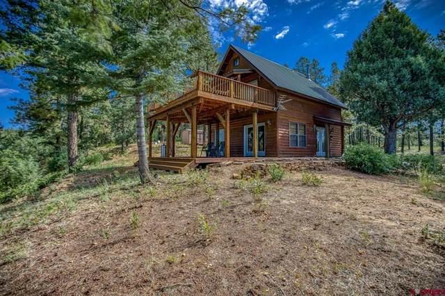 852 S Black Bear Place, Pagosa Springs, CO 81147 (MLS #786935) :: The Howe Group | Keller Williams Colorado West Realty