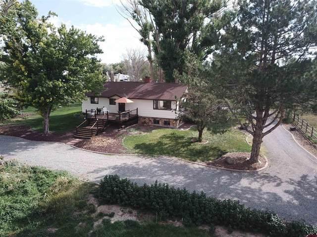 16794 Primrose Lane, Cedaredge, CO 81413 (MLS #786977) :: The Howe Group   Keller Williams Colorado West Realty