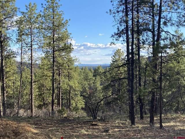 899 Red Canyon Trail, Durango, CO 81301 (MLS #786979) :: Durango Mountain Realty