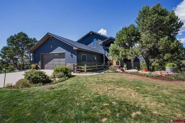 187 King Mountain Road, Durango, CO 81303 (MLS #786981) :: The Howe Group   Keller Williams Colorado West Realty