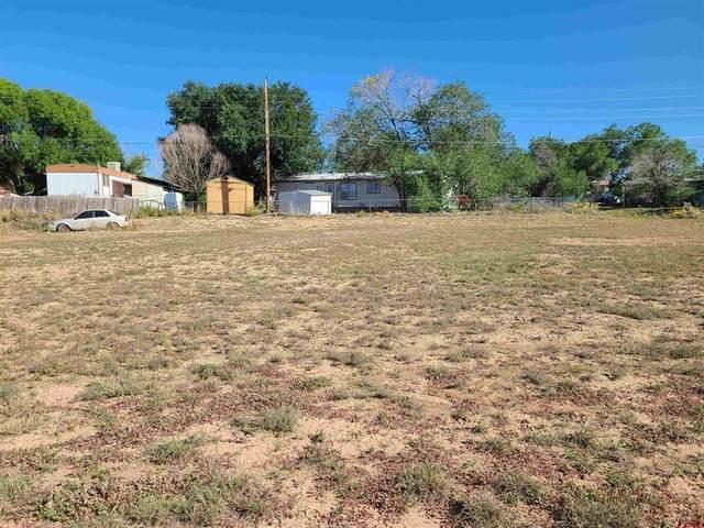 1220 Wagon Wheel Drive, Cortez, CO 81321 (MLS #786985) :: The Howe Group | Keller Williams Colorado West Realty
