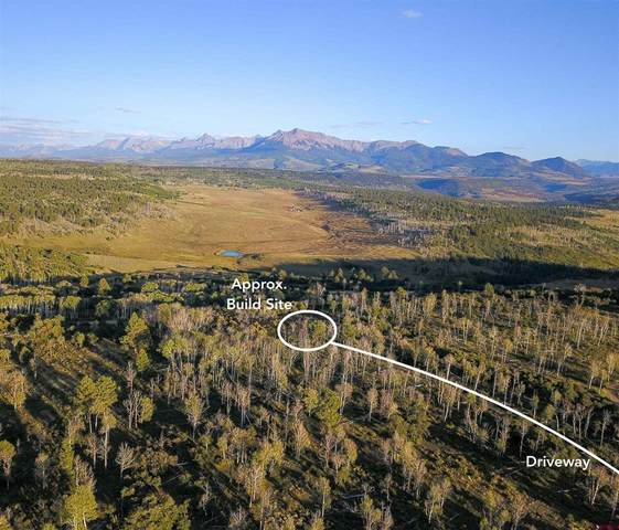 Lot 4 Wilson Vista Way, Placerville, CO 81430 (MLS #786994) :: The Howe Group   Keller Williams Colorado West Realty