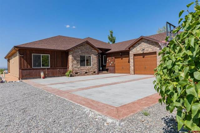 2243 6450 Road, Montrose, CO 81401 (MLS #787019) :: The Howe Group | Keller Williams Colorado West Realty