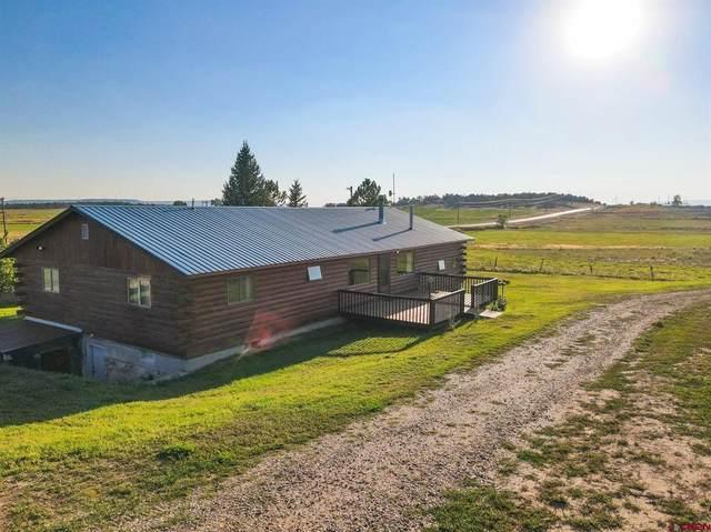 10914 State Highway 172, Ignacio, CO 81137 (MLS #787028) :: Berkshire Hathaway HomeServices Western Colorado Properties