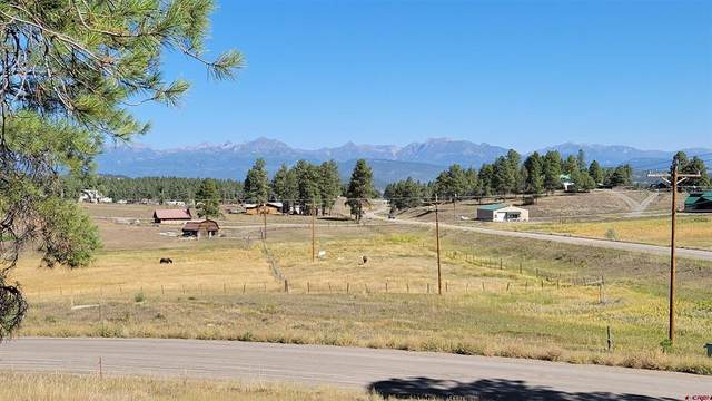 52 River Forest Drive, Pagosa Springs, CO 81147 (MLS #787030) :: The Howe Group   Keller Williams Colorado West Realty