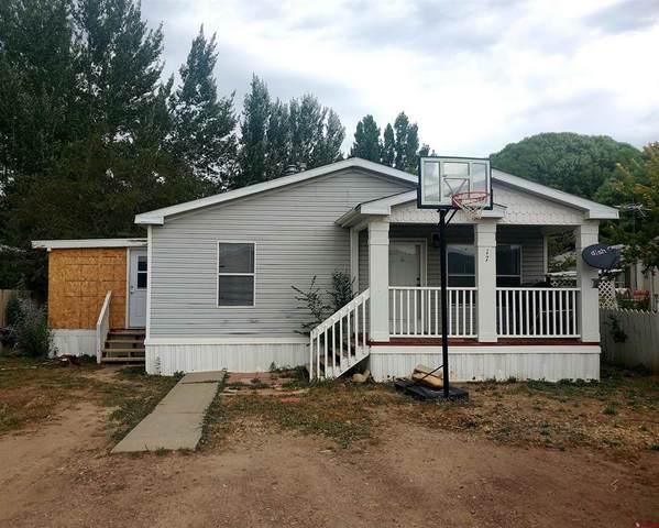 28260 Hwy 160 #17, Cortez, CO 81321 (MLS #787038) :: The Howe Group | Keller Williams Colorado West Realty