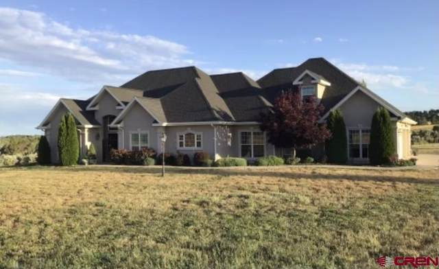 12999 Road 30.5 Loop, Mancos, CO 81328 (MLS #787051) :: Berkshire Hathaway HomeServices Western Colorado Properties