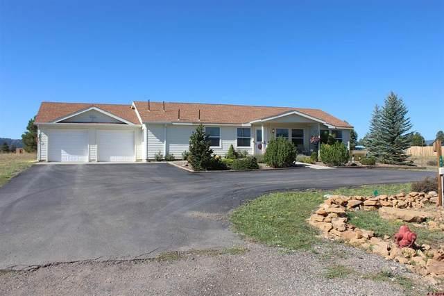 84 Fireside Street, Pagosa Springs, CO 81147 (MLS #787063) :: The Howe Group   Keller Williams Colorado West Realty