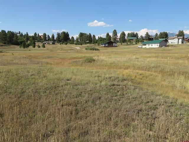 79 Hills Circle, Pagosa Springs, CO 81147 (MLS #787071) :: The Howe Group | Keller Williams Colorado West Realty