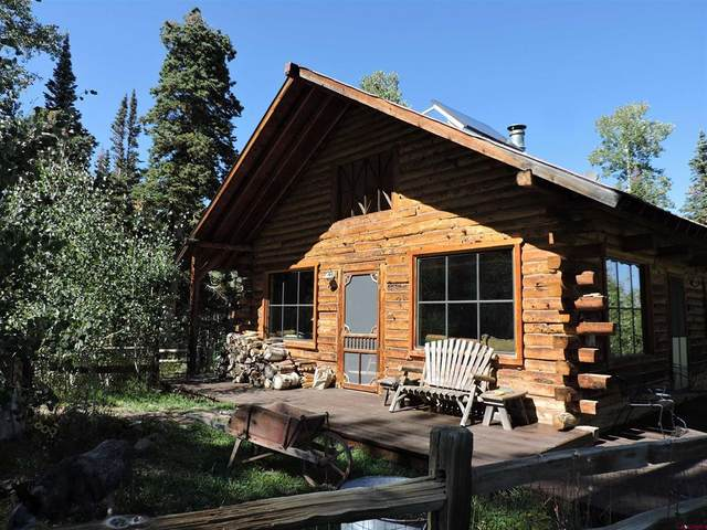 2840 San Juan Vista Road, Placerville, CO 81430 (MLS #787072) :: The Howe Group   Keller Williams Colorado West Realty