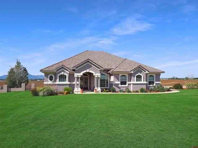 12795 Road 24.4, Cortez, CO 81321 (MLS #787105) :: Berkshire Hathaway HomeServices Western Colorado Properties