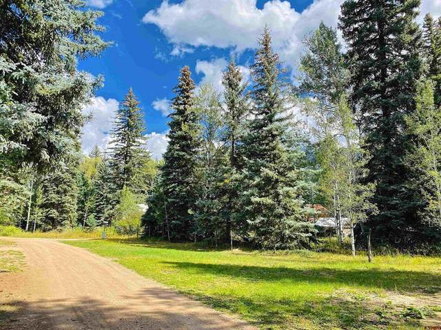 TBD Trust Drive, Vallecito Lake/Bayfield, CO 81122 (MLS #787118) :: Berkshire Hathaway HomeServices Western Colorado Properties