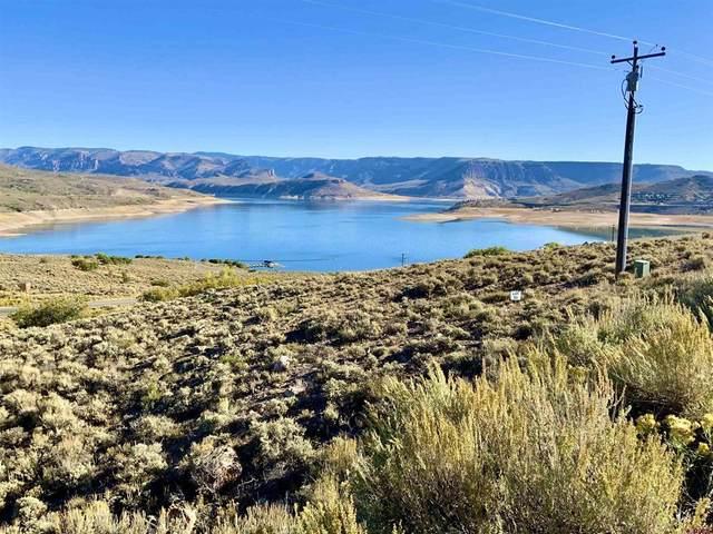 103 Cut Throat Lane, Gunnison, CO 81230 (MLS #787155) :: Dawn Howe Group | Keller Williams Colorado West Realty