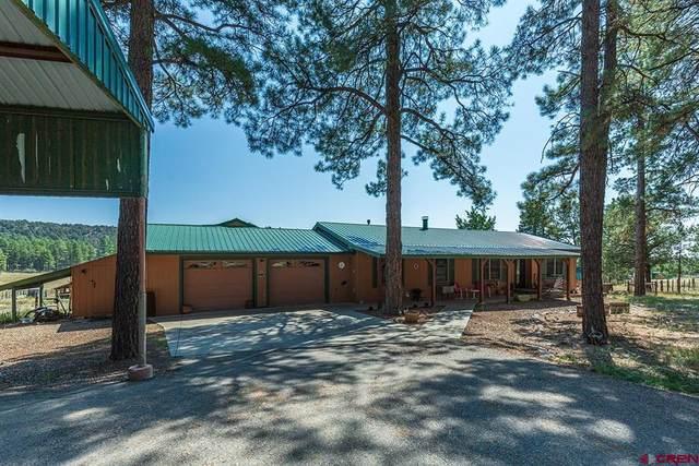 1113 Long Hollow, Durango, CO 81301 (MLS #787176) :: Berkshire Hathaway HomeServices Western Colorado Properties