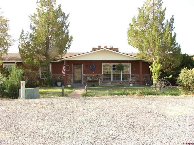20704 Iris Road, Austin, CO 81410 (MLS #787197) :: Berkshire Hathaway HomeServices Western Colorado Properties