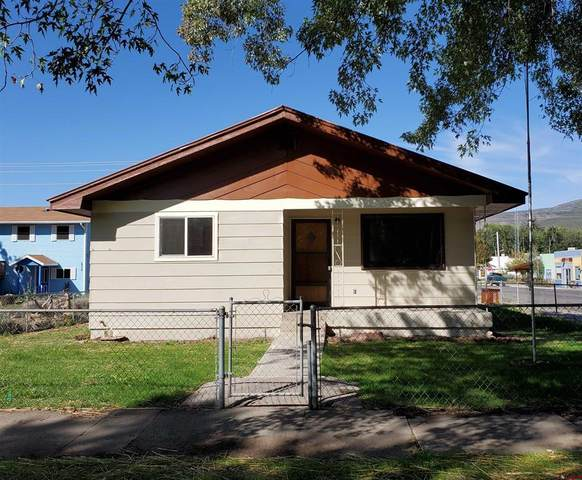 240 Onarga Avenue, Paonia, CO 81428 (MLS #787205) :: The Howe Group | Keller Williams Colorado West Realty
